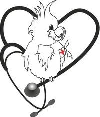 Больница иваново официальный сайт